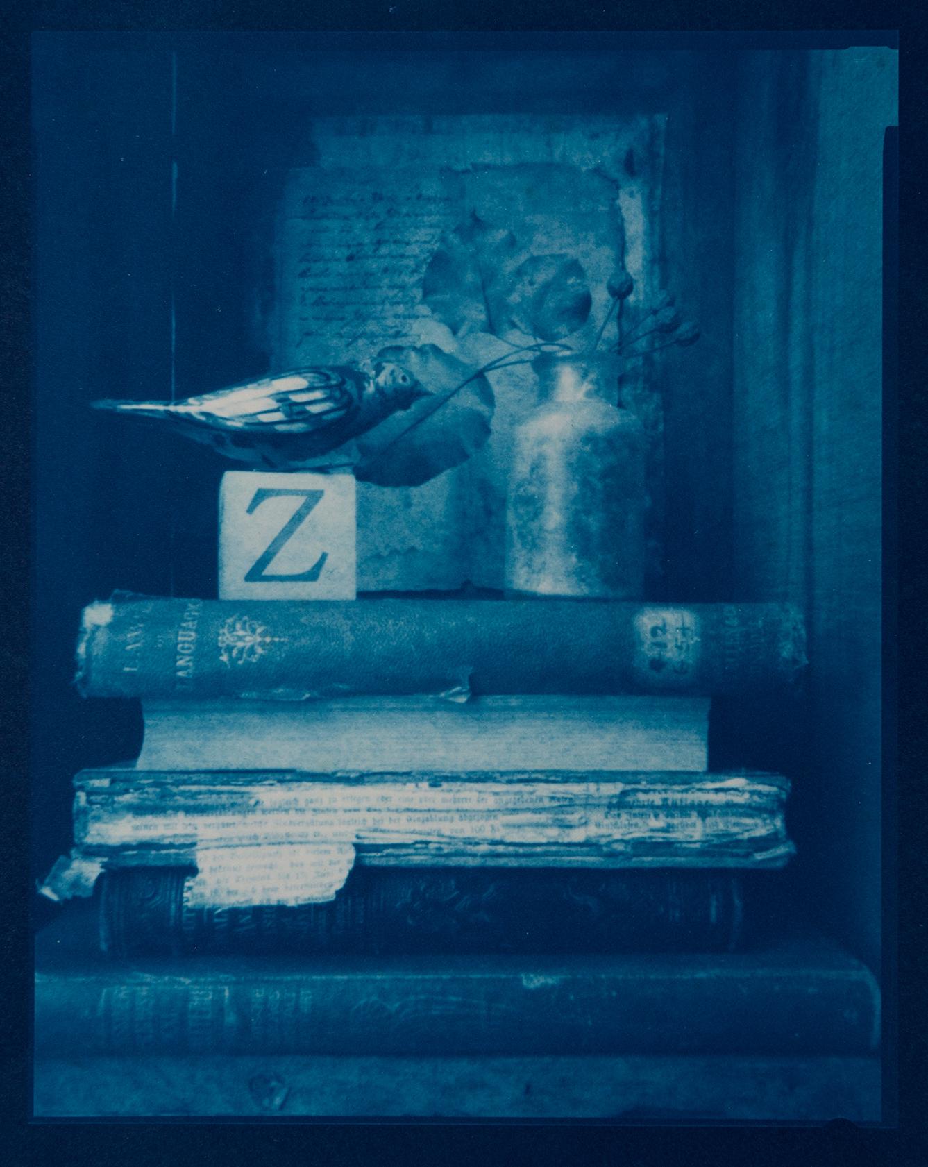 J Ferguson Poznan bird-Z 2012 pinhole cyanotype